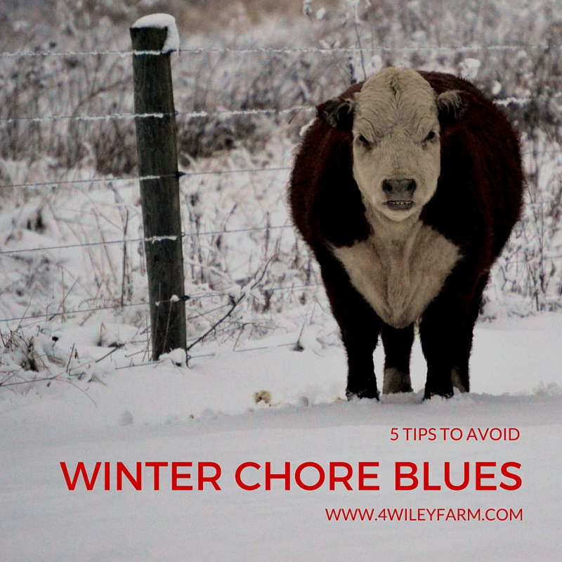 5 tips to avoid winter chore blues