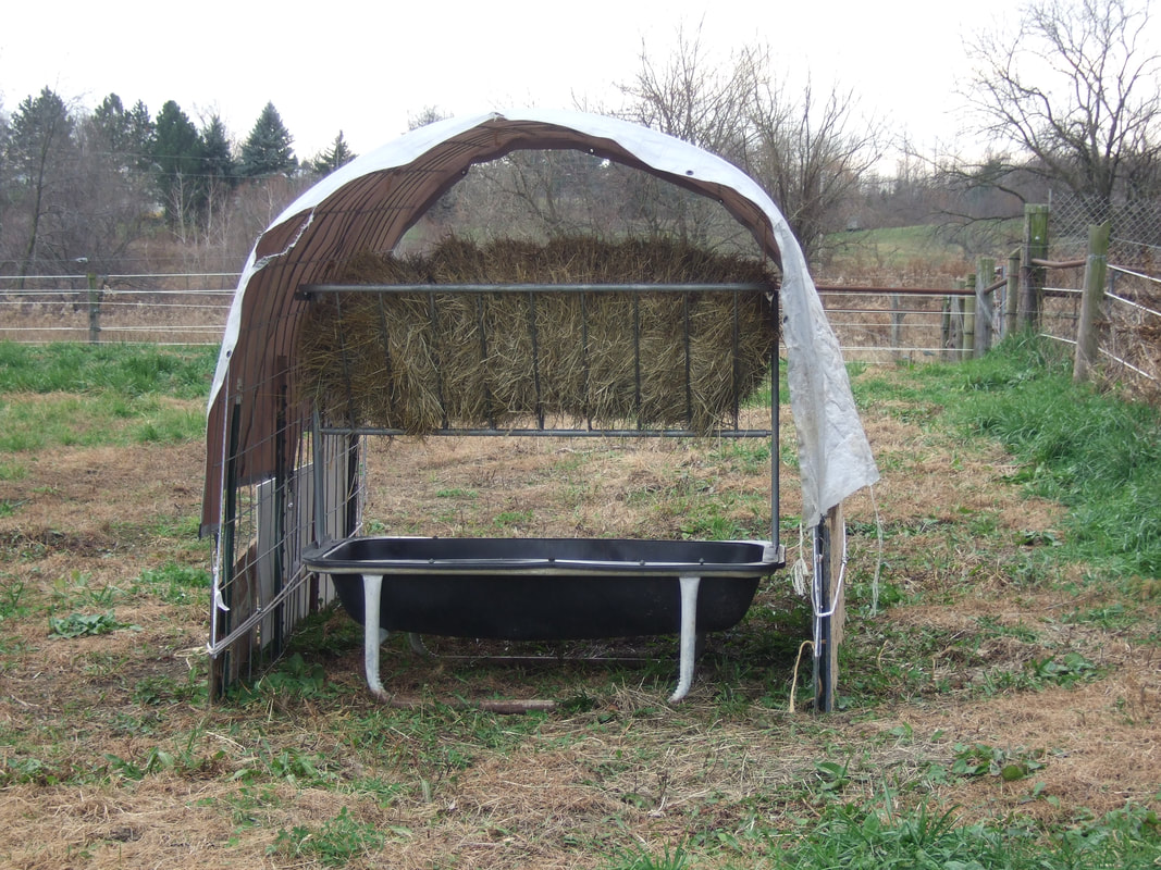DIY cattle panel shelter