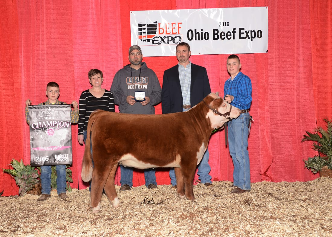 TAX Six Queens 2016 Ohio Beef Expo Reserve Grand Champion